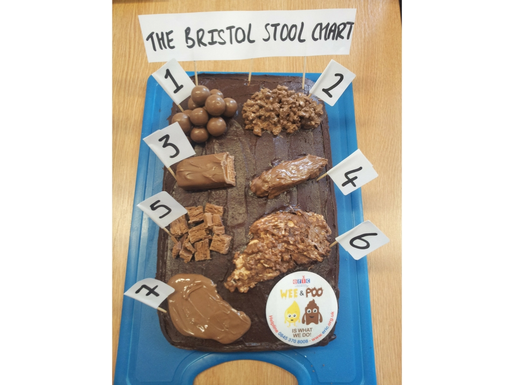 Bristol stool form scale cake